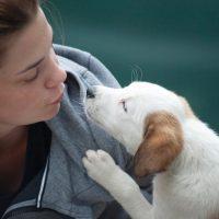 woman-wearing-gray-jacket-beside-white-puppy-1174081